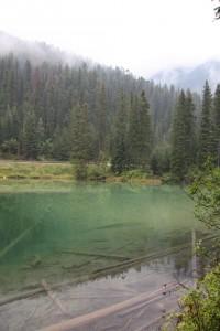20 olive lake