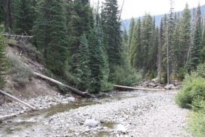23 canyon nature trail
