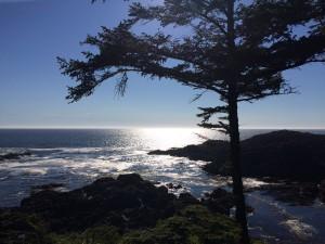 03 Wild Pacific Trail