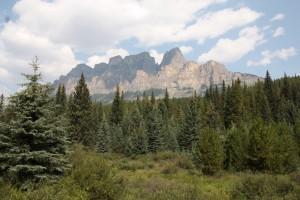 18 castle mountain
